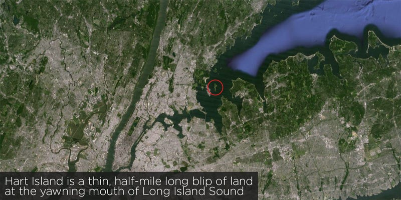 It S A Place Where Few Living New Yorkers Have Ever Set Foot But Nearly A Million Dead Ones Reside Hart Island The United States Largest Mass Grave