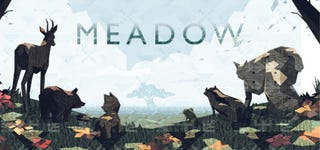 Illustration for article titled Meadow: a Steam Review