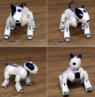 Illustration for article titled Genibo: Aibo Knockoff Coming