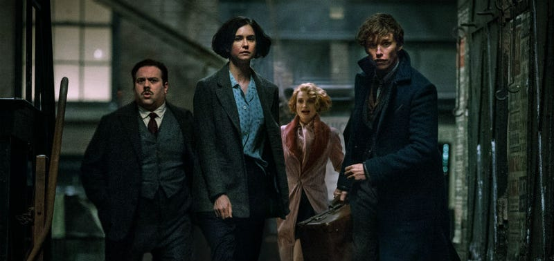 The main players in Fantastic Beasts and Where to Find Them. All Images: Warner Bros.
