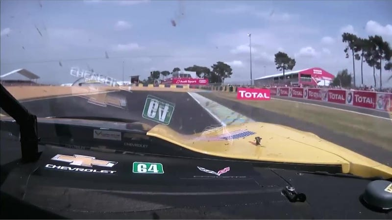 Illustration for article titled Giant Flies Of Le Mans Are Wreaking Havoc On Corvette Racing's Camera