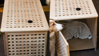 Illustration for article titled Convert an Ikea Storage Table Into an Attractive Pet Crate