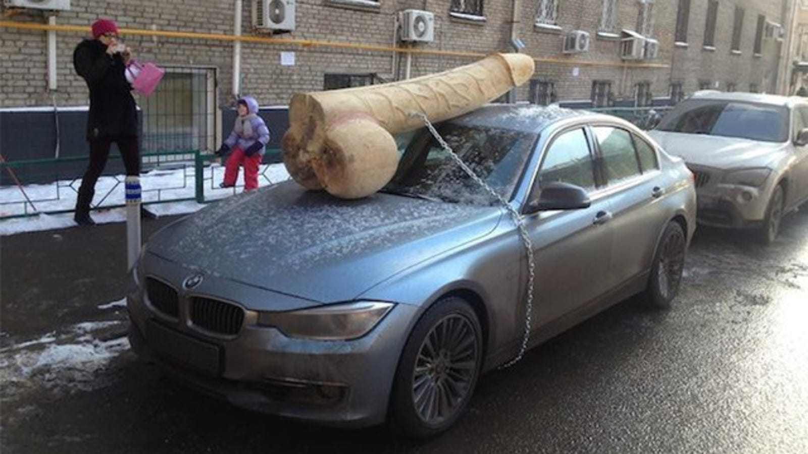 putin critic finds 200 pound wooden cock on roof of her bmw. Black Bedroom Furniture Sets. Home Design Ideas