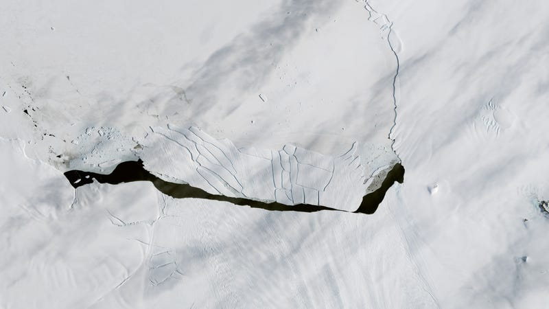 An image of B-44, the most recent large iceberg to break off the Pine Island Glacier, captured on October 23rd. Image: NASA Earth Observatory