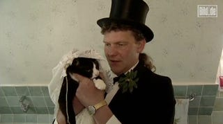 Illustration for article titled German Man Marries Dying Cat