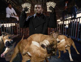 Illustration for article titled Michael Vick Indicted On Dogfighting Charges