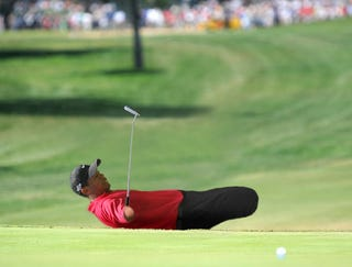Illustration for article titled Armless, Legless Tiger Woods Wins U. S. Open