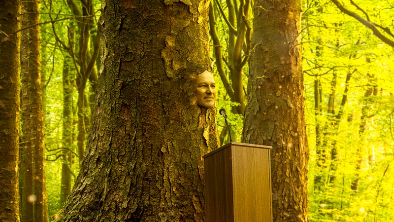 Illustration for article titled 'Don't Worry, I'll Always Be Here To Fight Climate Change,' Says Jay Inslee Before Ethereally Turning Into Majestic Oak