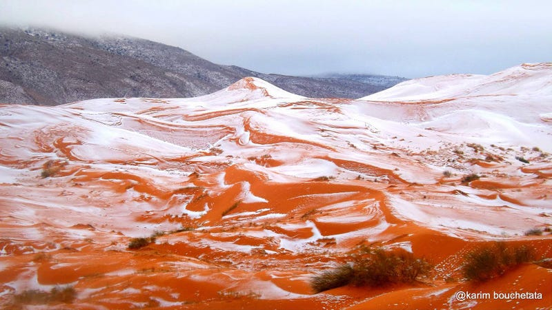Illustration for article titled Photos of Freak Snowfall in the Sahara Look Unreal