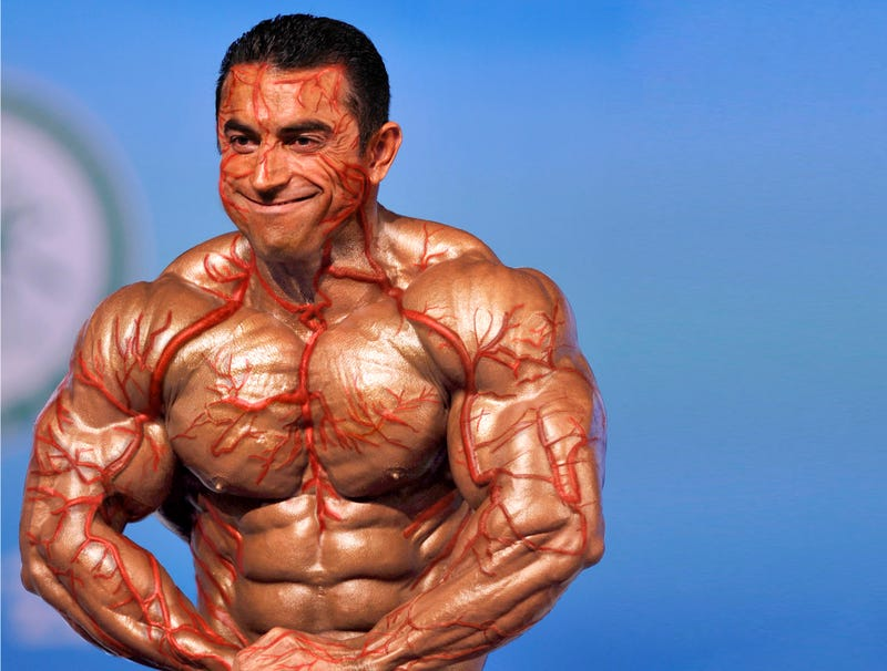 Illustration for article titled Bodybuilder's Veins Now Outside Of His Skin