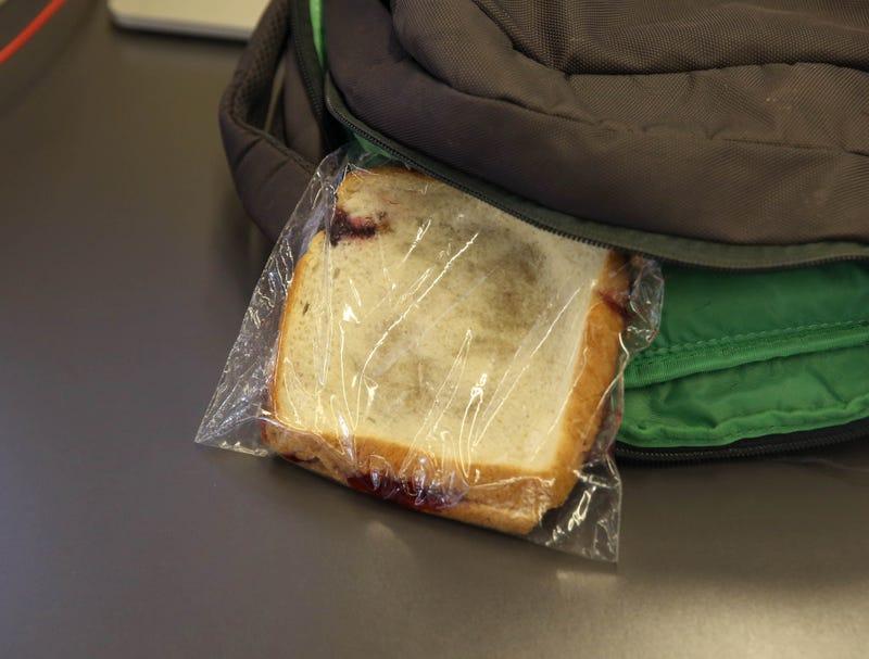 A flat-looking sandwich is inside a backpack.