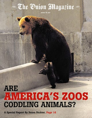 Illustration for article titled Are America's Zoos Coddling Animals?