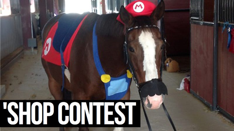 Illustration for article titled Kotaku 'Shop Contest: Mario Horse