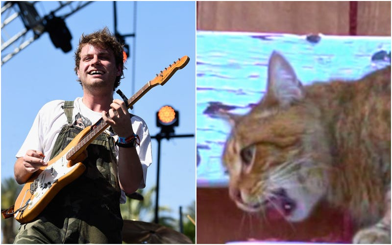 Mac DeMarco (left), Pickles the cat (right)
