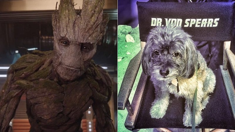 Illustration for article titled Groot Was Inspired By James Gunn's Dog—That Explains A LOT