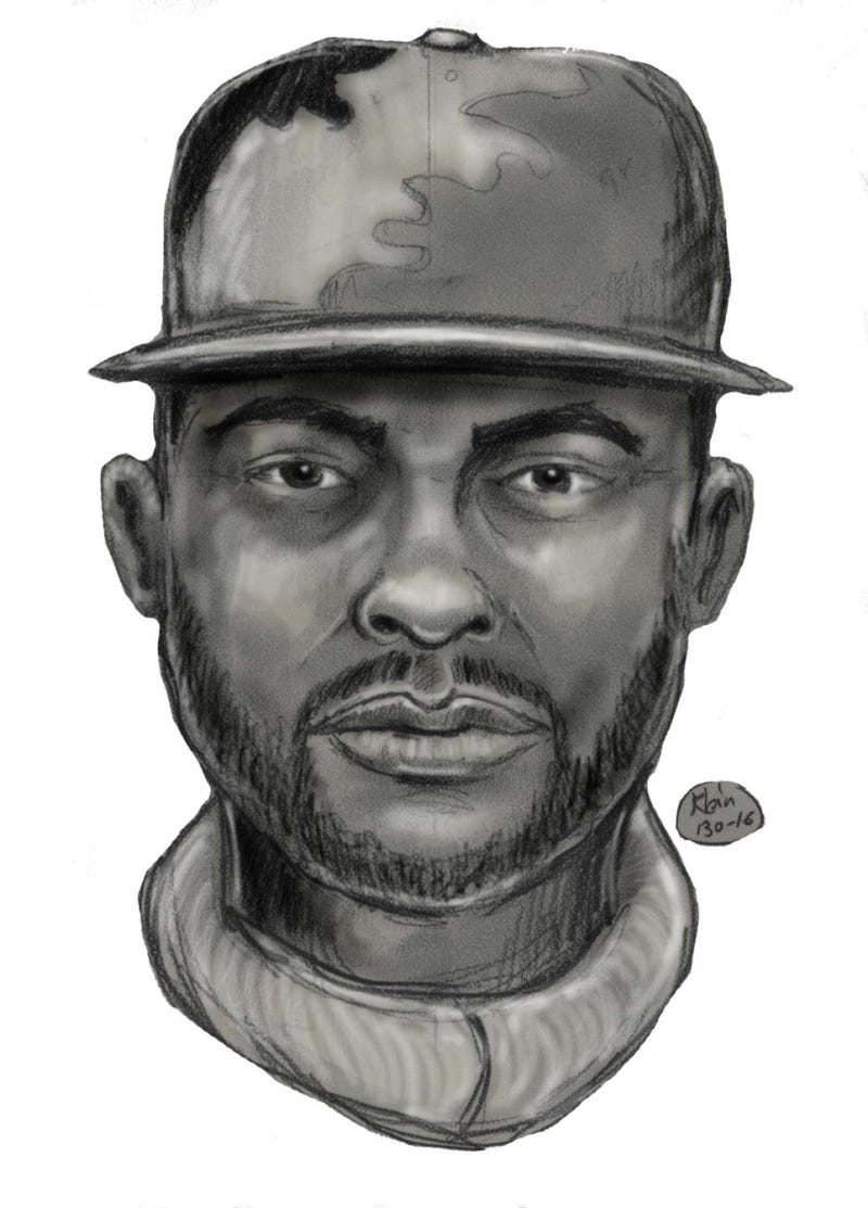 Sketch of suspectNew York City Police Department