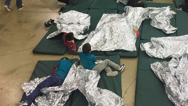 Professors sign letter condemning separation of immigrant
