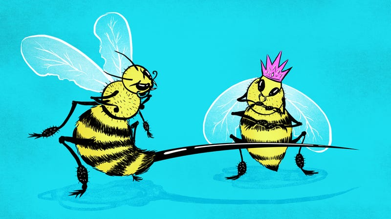 Illustration for article titled Queen Bees Are a Myth, Men Still the Ones Blocking Your Way to the Top