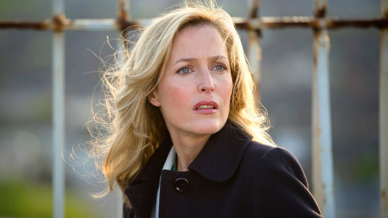 Gillian Anderson plays a bi character on The Fall.