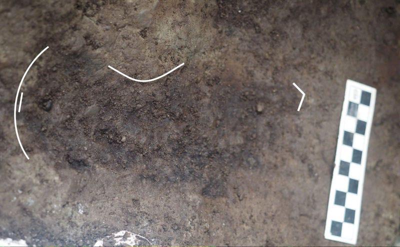 Illustration for article titled Un grupo de arqueólogos ha encontrado 29 huellas humanas de hace 13.000 años en una playa de Canadá