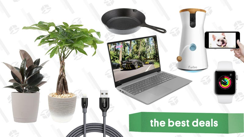 Illustration for article titled Wednesday's Best Deals: Apple Watch, Pyrex, Plants, Anker Cables, and More