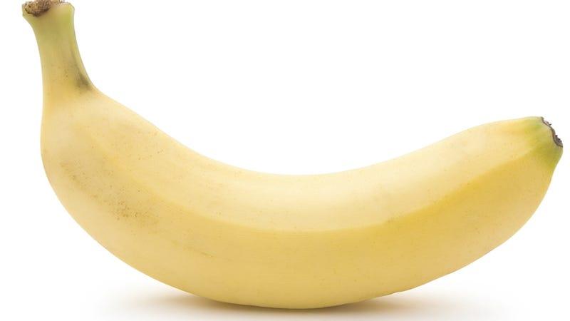 Illustration for article titled Banana Ban at the BBC Batters Boner-Shaped Fruit