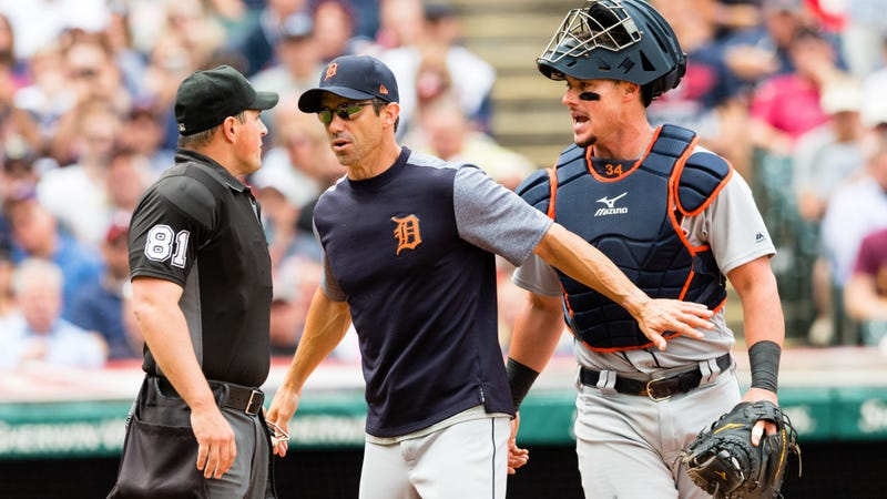 Tigers irate over insinuation of purposely hitting umpire