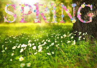 Illustration for article titled You can tell spring is around the corner when...
