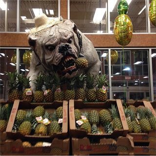 Illustration for article titled Georgia Grocery Store Terrorized By Giant Nightmare Bulldog
