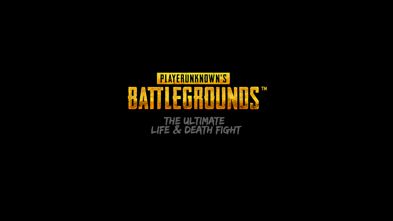 Illustration for article titled PLAYERUNKOWN'S BATTLEGROUNDS Review