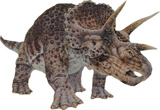 the triceratops never existed it was actually a young version of