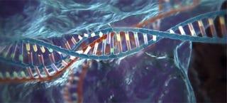 Nature Human Embryo Crispr Cas