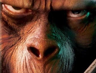 Illustration for article titled Rise of the Apes: Jamming More Monkey Business Down Our Throats Next Summer