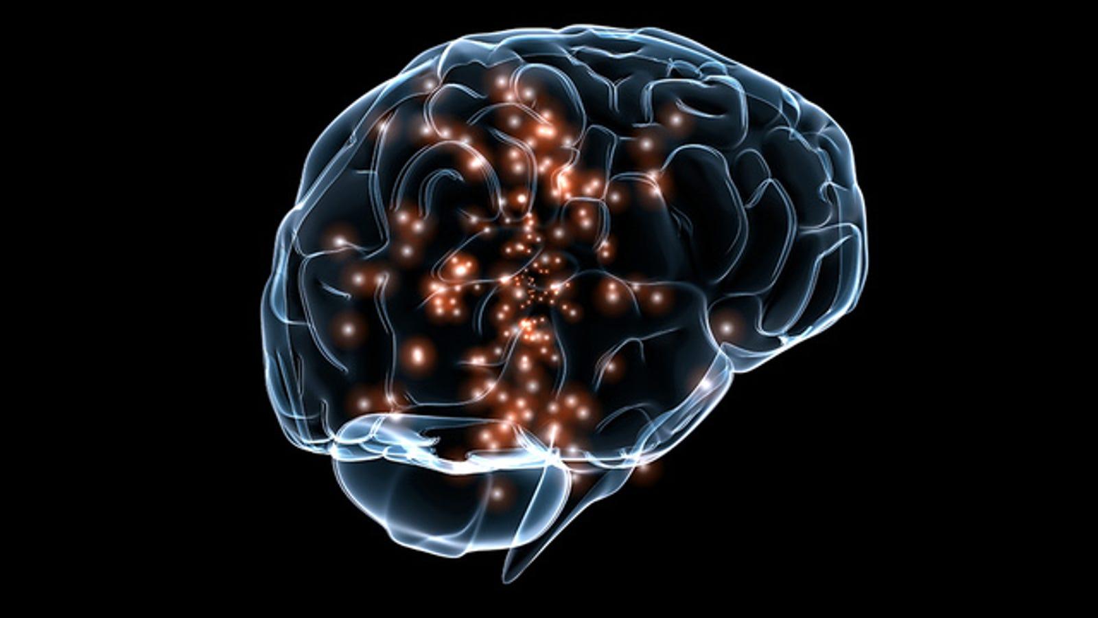Logran reconstruir la imagen de una cara a partir de ondas cerebrales