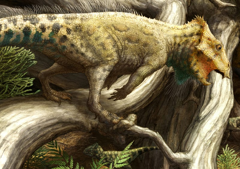 Illustration for article titled The Oldest Horned Dinosaur Ever Discovered In North America Is Tiny