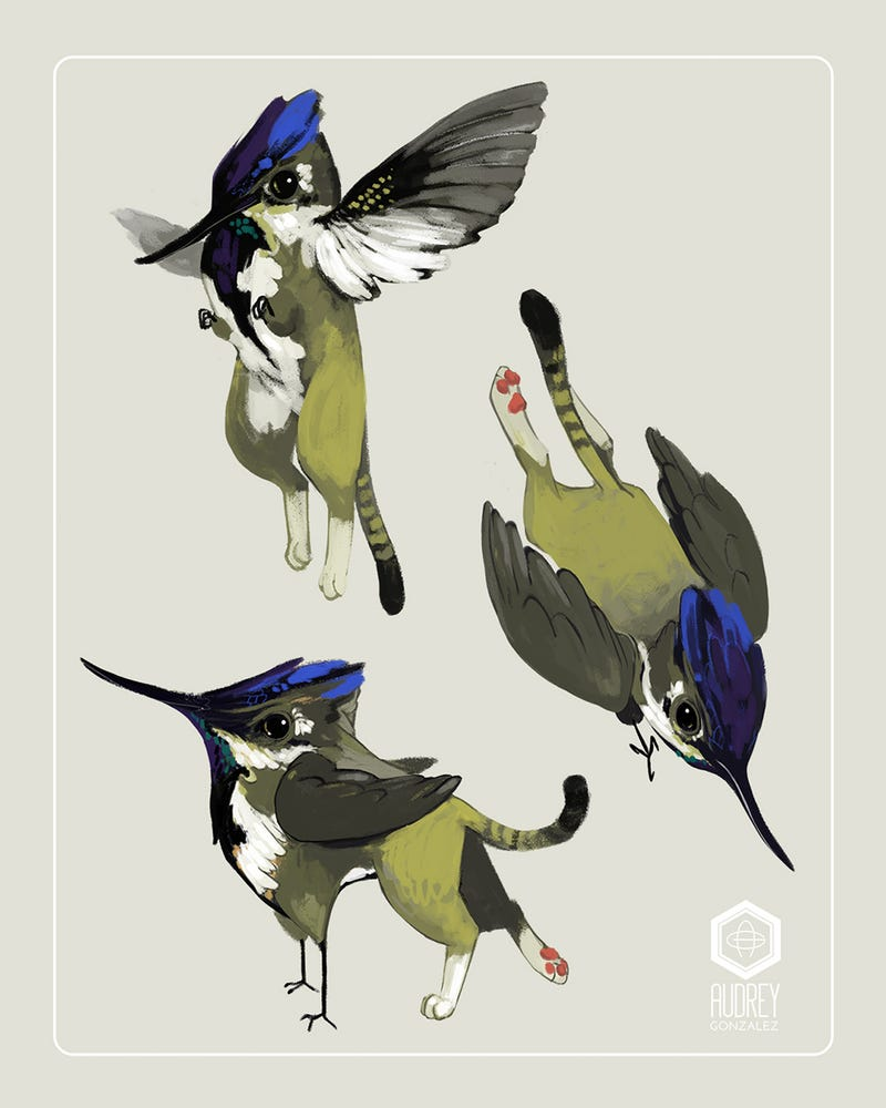 Illustration for article titled Tiny Griffin Is Part Cat, Part Hummingbird—And Entirely Adorable