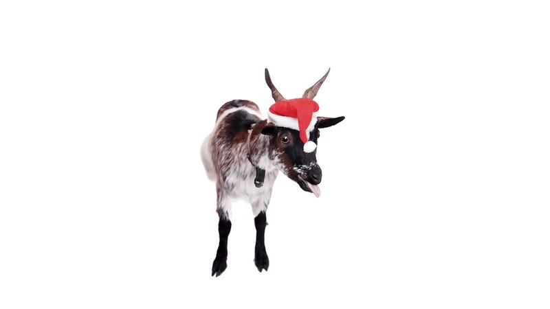 Illustration for article titled Have You Considered Feeding Your Christmas Tree to a Goat?
