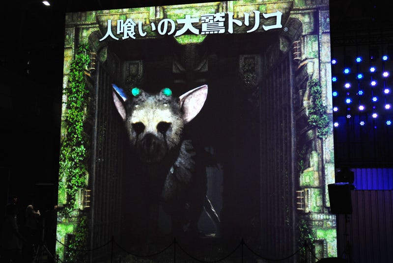 Illustration for article titled There's A Virtual Last Guardian At TGS