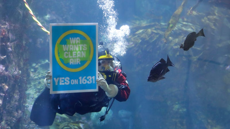A diver at the Seattle Aquarium during an event to announce the aquarium's endorsement of Initiative 1631.