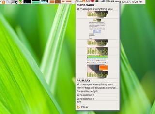 Illustration for article titled DDM clipboard manager, download manager, and screenshot master