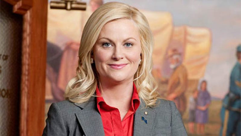 Illustration for article titled The Best Questions and Answers From Amy Poehler's Delightful AMAA