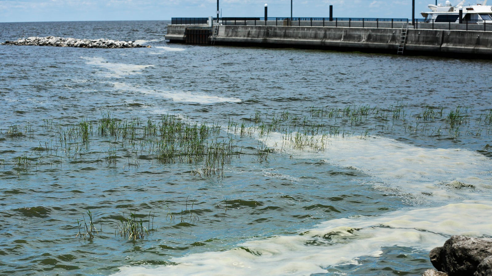 Why Florida's Largest Lake Is Filled With Toxic Algae, Again