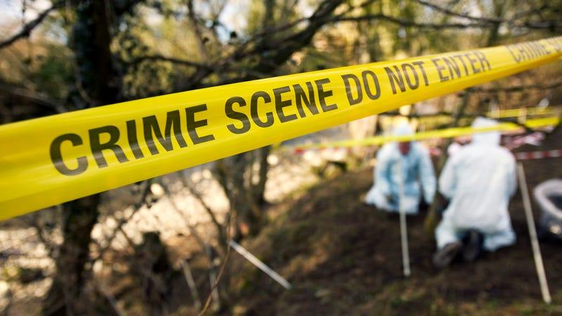 Illustration for article titled How A Crime Scene Investigation Works