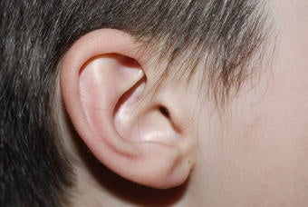 """Illustration for article titled """"Little"""" People, Big Ears"""