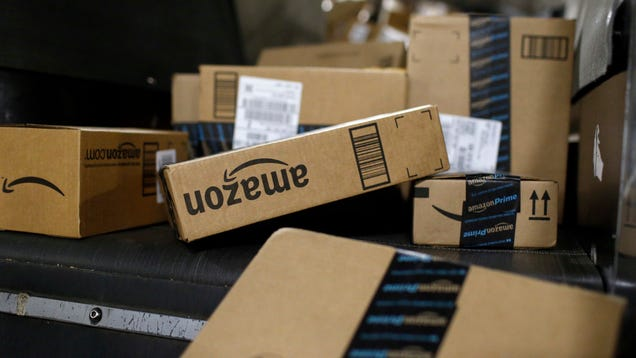 After Bear Repellent Incident, Amazon Plans to Store Some Hazardous Products at Specialized Warehouses