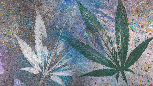 Cannabis may make your insomnia worse not better utter buzz marijuana helps many people fall asleep but that short term benefit doesnt always translate to long term use a new study backs up the idea that you may fandeluxe Gallery