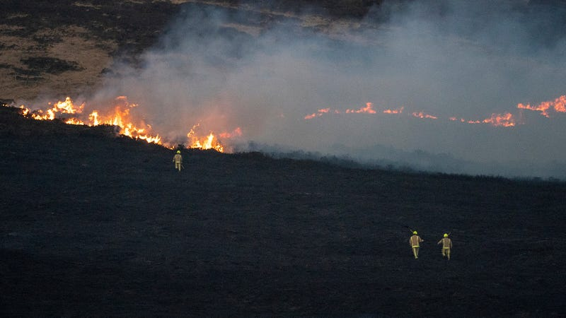 Fires burning the British countryside in February.