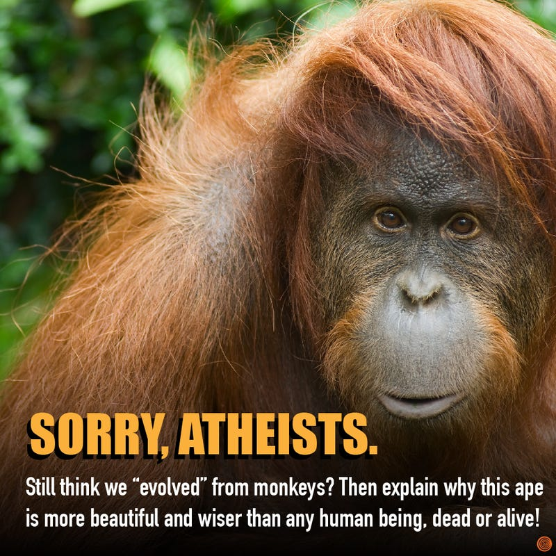 Illustration for article titled Atheists Will Not Have An Answer For This!