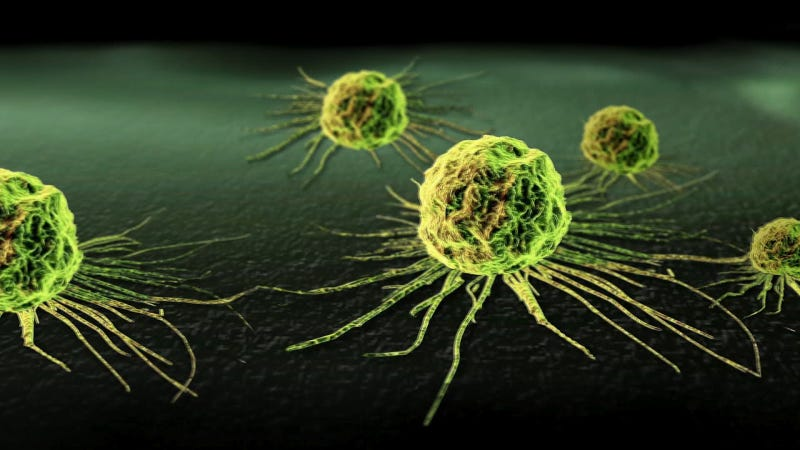 Illustration for article titled Scientists Discover How Cancer Cells Chase After Healthy Cells