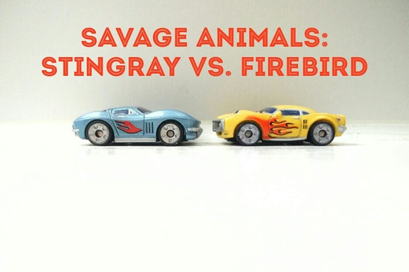 Illustration for article titled Sting Ray vs. Firebird